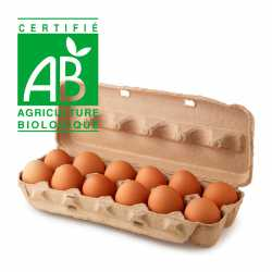 Brown Organic Eggs
