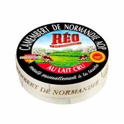 Raw milk Camembert